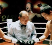 Crying Fist: Punch Drunk Love