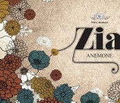 """Zia Brings Winter Blooms with """"Anemone"""""""