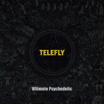20130330_seoulbeats_telefly2