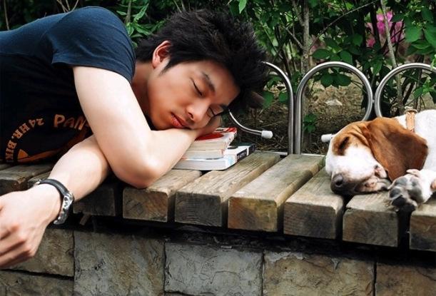 20130426_seoulbeats_gong_yoo_dog_sleep