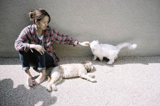 20130601_seoulbeats_hyori_cat_dog