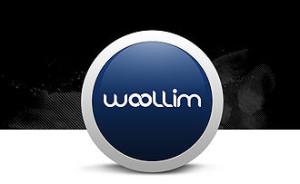 20130809_seoulbeats_wooliment