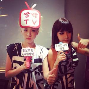20140129_seoulbeats_2ne1_dara_bom