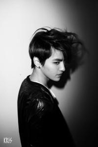 20140516_seoulbeats_exom_kris2
