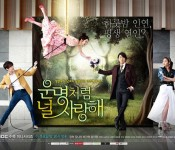 Series Overview: Fated to Love You is a Bundle of Laughter and Tears