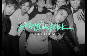 20141114_seoulbeats_cross gene