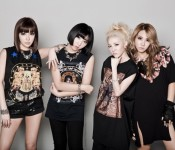 2014 Proves to be a Rollercoaster Year For 2NE1