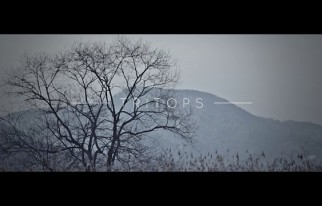 20150801_seoulbeats_tritops