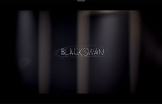 20150224_seoulbeats_rainbow_black_swan4