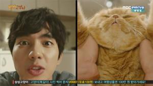 20160210_seoulbeats_imaginarycat3